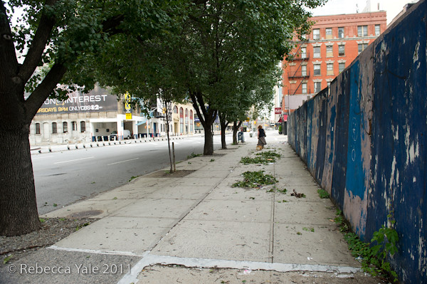 RYALE_Hurricane_Irene_Aftermath_NYC-7