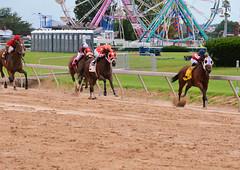 2011-08-27 (51) r3 Xavier Perez on #4 Roman's Touch (JLeeFleenor) Tags: horses ma caballo cheval photography photo md photos statefair uma maryland jockeys jockey gigi ferriswheel horseracing jinete cavallo cavalo each kuda alogo hest thoroughbreds soos hevonen koin timonium  jokey hst  jquei  ko faras  mdstatefair thoroughbredracing  konj    dokej rennreiter fantina  pfeerd marylandhorseracing  marylandracing dokej xavierperez     okej kilparatsastaja  jocheu