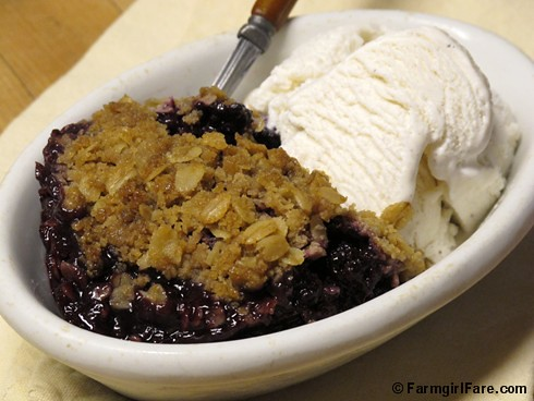 Old-Fashioned Blackberry Crisp 2 - FarmgirlFare.com