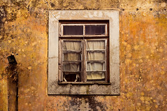 day #231 (João Carmo) Tags: old city orange house texture abandoned window warm natural decay tones arquitecture yellowish