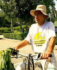 Stop OGM (mattelya) Tags: sansogm gentechnikfrei noquierotransgenicos gmofreeworld httpwwwnopatentsonseedsorg