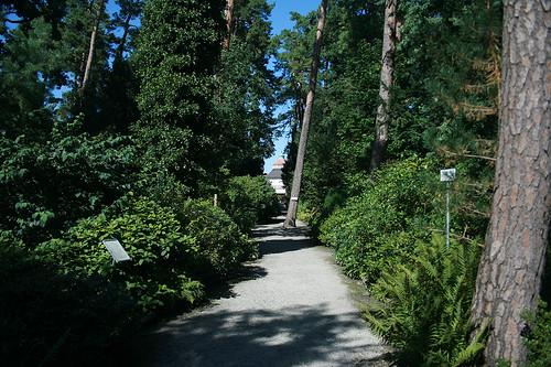 Weg - Botanischer Garten München