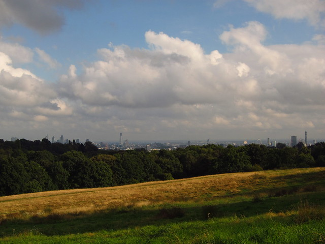 London seen from Cohen's Fields