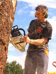 Carve Carrbridge (carrhighlander (James R)) Tags: carve sotland carrbridge invernessshire chainsawcarving