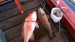 20100808 (fymac@live.com) Tags: mackerel fishing redsnapper shimano pancing angling daiwa tenggiri sarawaktourism sarawakfishing malaysiafishing borneotour malaysiaangling jiggingmaster