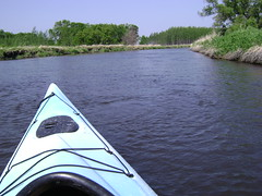 Canoeing on the Pomme de Terre River