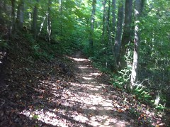 Soft Surface Trail