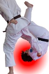 Will Adams Festival 2011 (Sprogz) Tags: brown black festival belt jujitsu martialarts 365 gi 253 2011 willadams project365 365project 2011inphotos