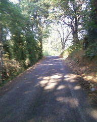 A steep one-lane road connecting 224 with Eagle Creek Road -- what's not to love?