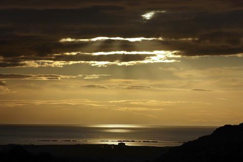 Icelandic godlight