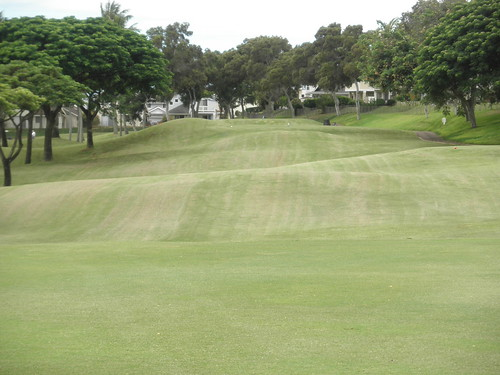 WAIKELE COUNTRY CLUB 196