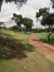 WAIKELE COUNTRY CLUB 209
