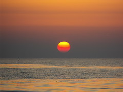 tramonto sul mare (angler70 (Luca Borrelli)) Tags: sunset sea sun beach nature landscape funny surf estate tuscany sup windsurf sailng sunsetsurf