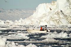 Broken Boat (Kiddi Einars) Tags: cold ice broken boat greenland iceberg kalt btur grnland icecold ilulissat s grnland sjaki skalt