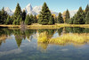 Schwabacher Landing (bhophotos) Tags: travel autumn usa mountains reflection fall film nature water colors landscape geotagged golden pond nikon f100 valley fujifilm wyoming aspen tetons jacksonhole grandtetonnationalpark gtnp schwabacherlanding 2485mmf284d fujicolorsuperiareala bruceoakley