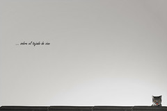 ... on a hot tin roof (Cani Mancebo) Tags: roof bw white black byn blancoynegro blanco cat cutout tin negro commercial gata tejado blanc zinc comercial noire virado minimalista desaturado superlativas canimancebo