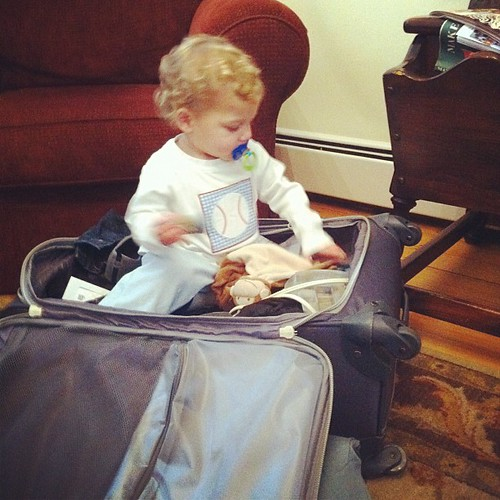 Trying to go home in Gigi's suitcase