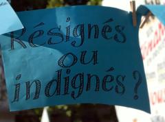 IN DIritto. (occhi di lisa) Tags: protesta foglio manifesto annalisa manifestazione domanda indignati occhidilisa