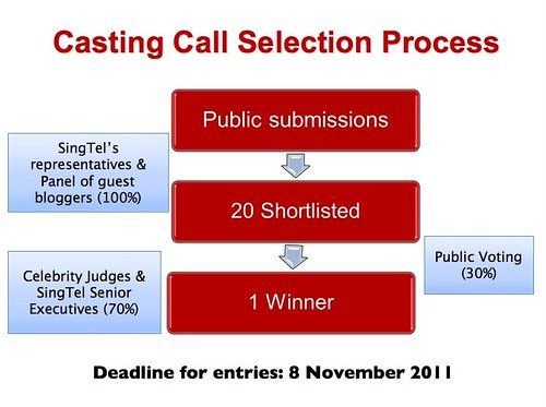 Annex 1 - Casting Call Selection Process