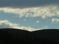 P1000015 (gzammarchi) Tags: italia nuvola natura volo campagna animale gesso paesaggio collina coppia uccello scuro casalfiumanesebo