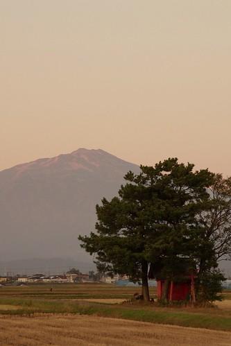 鳥海山と社叢