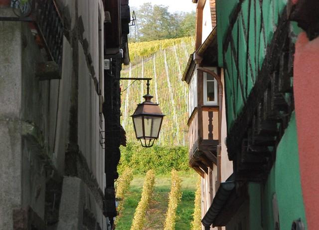 Alzacja - Riquewihr