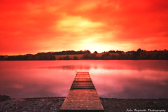 Golden Pickmere (juliereynoldsphotography) Tags: lake sunrise jetty pickmere
