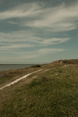 _MG_1552 (danieltreek) Tags: sun holiday holland beach nature water netherlands strand landscape see wasser sommer urlaub natur landschaft sonne nordsee niederlande northsee erholung
