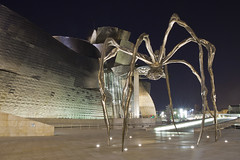 Spider (Vincent Ribbers) Tags: travel art museum architecture night spider bilbao guggenheim