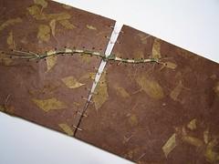 100_5039 (sandySTC) Tags: paper bristol book stitch handmade caterpillar bookbinding binding handbound 2011 lokta