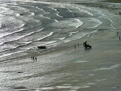 P1170242a (Northern Dave) Tags: blue sea sky dog beach sunshine lumix bay seaside sand waves walk yorkshire north panasonic chance filey promendade fz38 dmcfz38