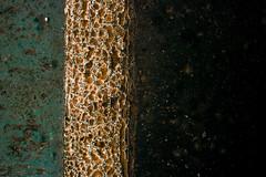 Paint (Daniel Kulinski) Tags: city urban cold wet misty fog mirror town europe image daniel creative picture shapes evil samsung poland warsaw civic imaging 1977 citizen less nx nx200 kulinski daniel1977 samsungnx samsungimaging samsungnx200 danielkulinski