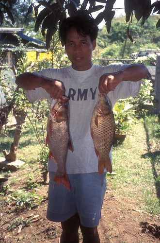 Aquaculture, Quirino Project, Philippines. Photo by WorldFish, 1999