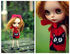Little Red - 309/365 ADAD 2011