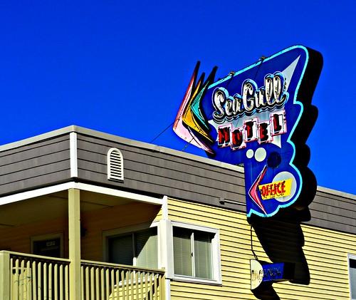 seagull motel, wildwood nj
