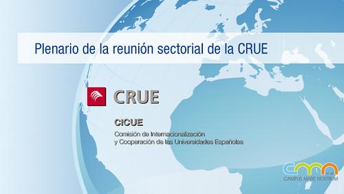 Reunión sectorial CRUE (CICUE)