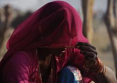 Lady in Veil (Ghunghat), Pushkar (me suprakash) Tags: pushkar gypsy rajasthan rajasthaniwoman tribalwoman ladyinveil pushkarcattlefair spiritofphotography faceinveil