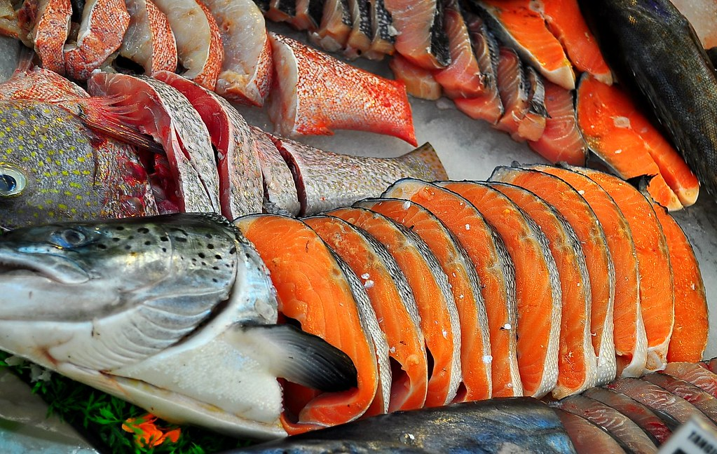 FRESH SALMON by whologwhy, on Flickr