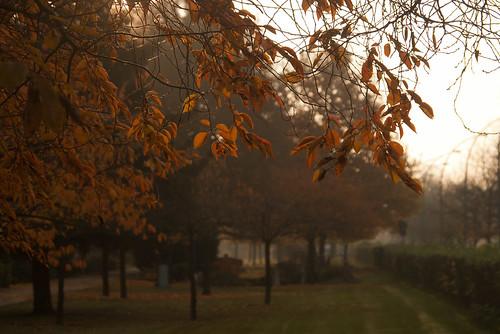 Morgens auf dem Friedhof