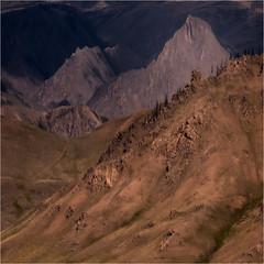 Mindscape 12 (josefontheroad) Tags: northwestmongolia saariysqualitypictures fleursetpaysages lelitedespaysages