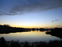 Going (kenny barker) Tags: autumn sunset sun nature water landscape lumix scotland haiku loch lochan bonnybridge panasonicgf1 kennybarker