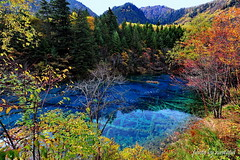 The Colors Of Nature (nawapa) Tags: china autumn lake flower tree landscape view five scenic sichuan jiuzhaigou 2011 nanping nawapa