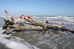 Happy Washed Up Face Down Tuesday (gebodogs) Tags: ocean beach sc island southcarolina driftwood huntingisland sear fdt facedowntuesday