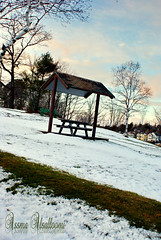 Dingle Park Halifax, Nova Scotia (Assma Alsalloomi) Tags: park snow halifax