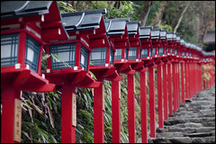 Repetition in red (Eric Flexyourhead) Tags: red japan stone stairs japanese wooden kyoto shrine bokeh line repetition lanterns  kansai jinja kibune kifune sakyoku  zd   50mmmacro20 50mmmacrof20  olympusep1 panasonicdmwma1