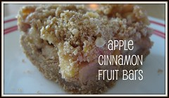 APPLE CINNAMON FRUIT BARS