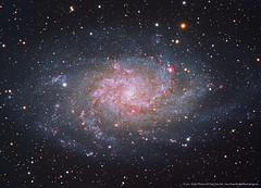 M33 Triangulum Galaxy LRGB+Ha (Terry Hancock www.downunderobservatory.com) Tags: camera sky mountain monochrome field night stars photography pier backyard williams tech space tube shed images astro mount observatory telescope ngc598 german astrophotography m33 short astronomy imaging triangulum ha pinwheel alpha ccd universe instruments 80 wo gem equatorial constellation celestron hydrogen paramount tmb teleskop astronomie byo f7 refractor deepsky 68mm autoguider flattener astrofotografie mi250 Astrometrydotnet:status=solved qhy5 130ss Astrometrydotnet:version=14400 at2ff mks4000 gt1100s qhy9m kaf8300 opticstmb 92ss Astrometrydotnet:id=alpha20111055838667