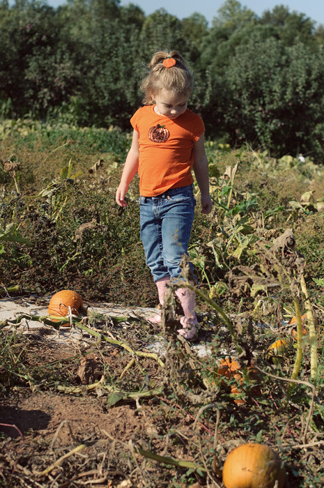 pumpkinpatch2011_9