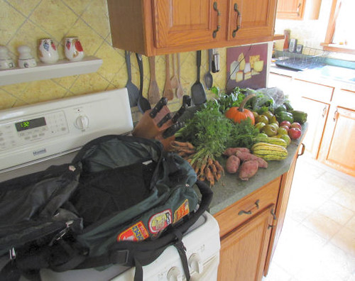 Vegetable In a Backpack