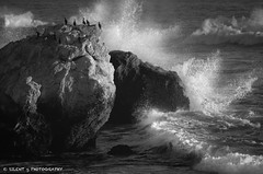 The Sea Was Angry That Day, My Friends... (Silent G Photography) Tags: ocean california ca blackandwhite bw water birds october rocks wake waves pacific crash tide boulders pismobeach f28 shellbeach seabirds reallyrightstuff 2011 nikkor70200mmf28 nikond7000 markgvazdinskas silentgphotography